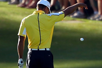 Tiger places his ball.